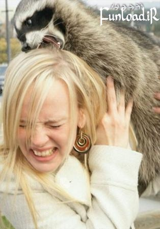 حمله ي حيوانات به دختران